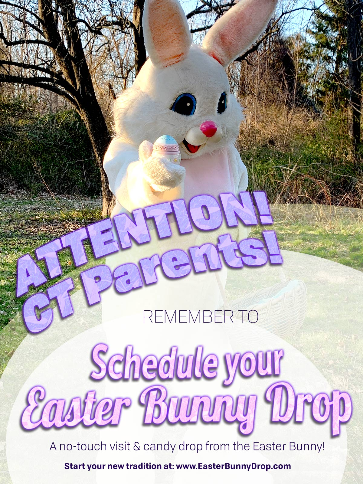 Easter Bunny Drop CT